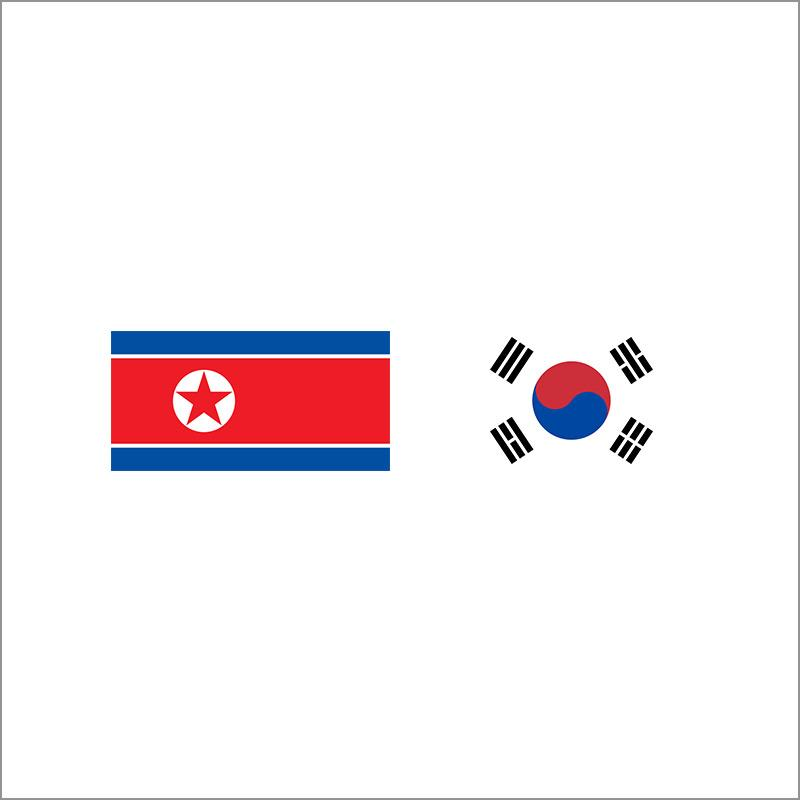North and South Korea Initiatives