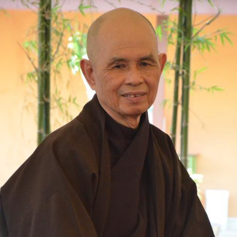 Image result for thich nhat hanh